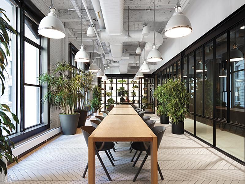 Ý tưởng thiết kế văn phòng xanh đơn giản, độc đáo và tiết kiệm